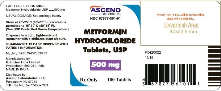 metformin manufacturing